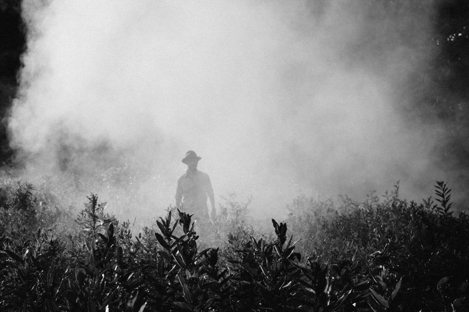 black and white fog cold people man guy alone grass plant nature outdoor travel