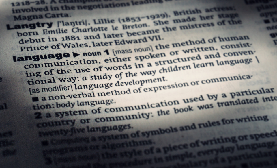 dictionary language words books text reading