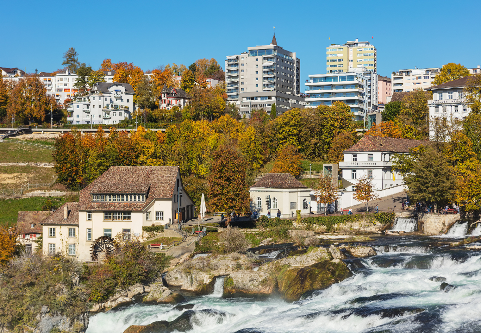Neuhausen am Rheinfall Switzerland view town building autumn tree colorful Neuhausen Rheinfall Schaffhausen Rhine Falls waterfall Rhine river water foam white stream rock stone cascade landmark sightseeing travel travel desti