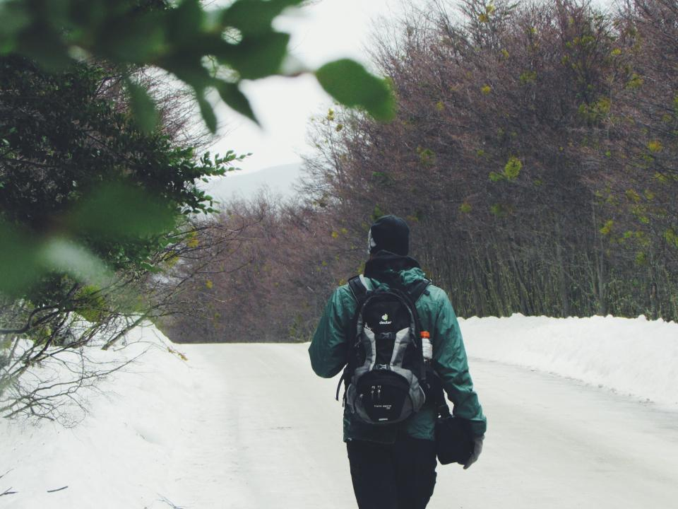 snow winter white cold weather ice trees plants nature people man travel adventure back pack alone