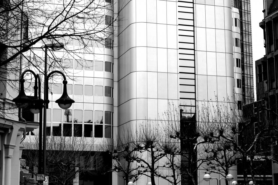 architecture building infrastructure structure establishment windows condominium hotel office work urban city trees black and white monochrome