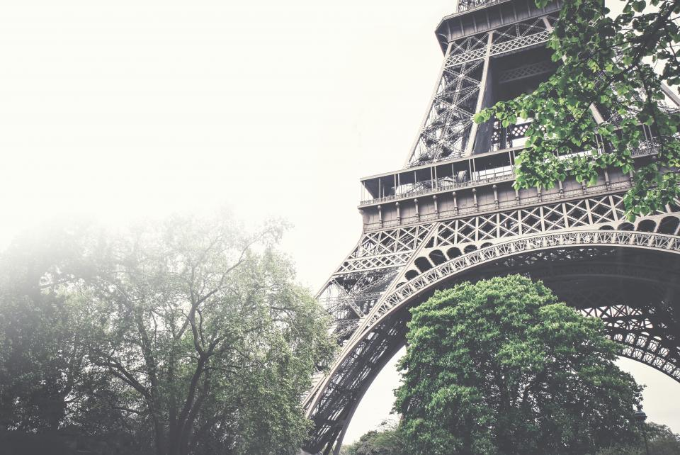 eiffel tower architecture trees leaves nature sky fog foggy