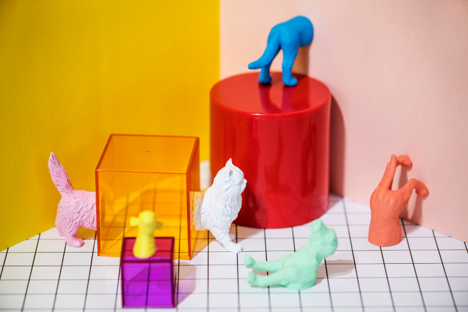 abstract animal background canine cat colorful concept creative cube decoration dog feline figure fun joy little mini miniature model neon orange pattern pet pink plastic play pop red shape small symbol text