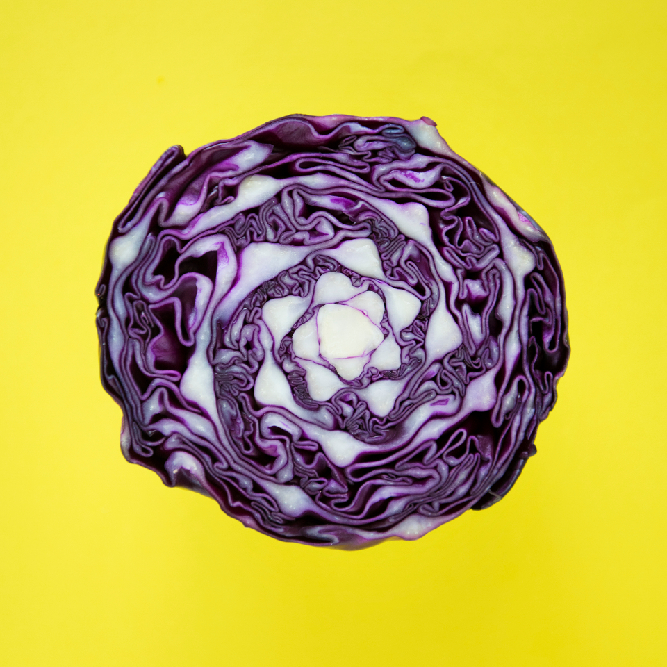 cabbage head round background cabbage cabbages closeup cook cooking food fresh freshness healthy ingredient macro natural organic purple salad tasty texture veg vegan vegetable veggie veggies violet wallpaper