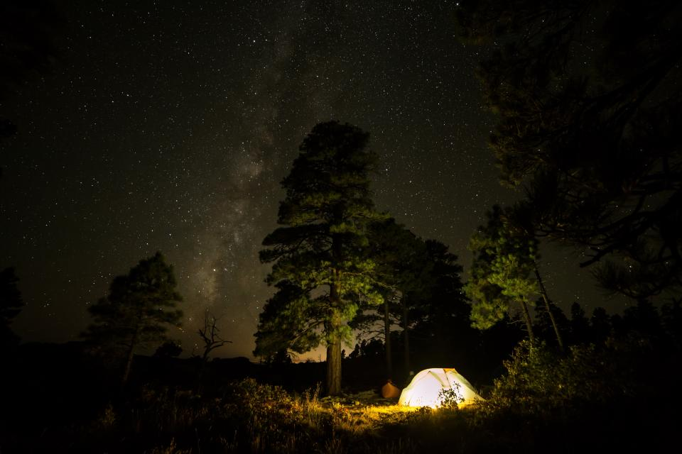 travel adventure camping night dark stars trees trip friends light tent woods forest grass mountain