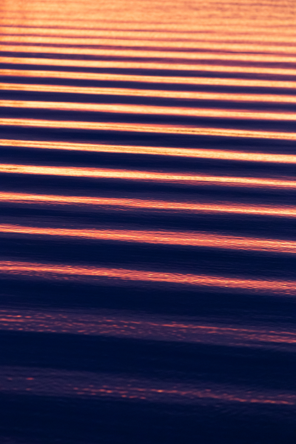 rippled water lake waves sunlight reflections current drift nature ocean river sea wet movement surface texture sunset mobile wallpaper