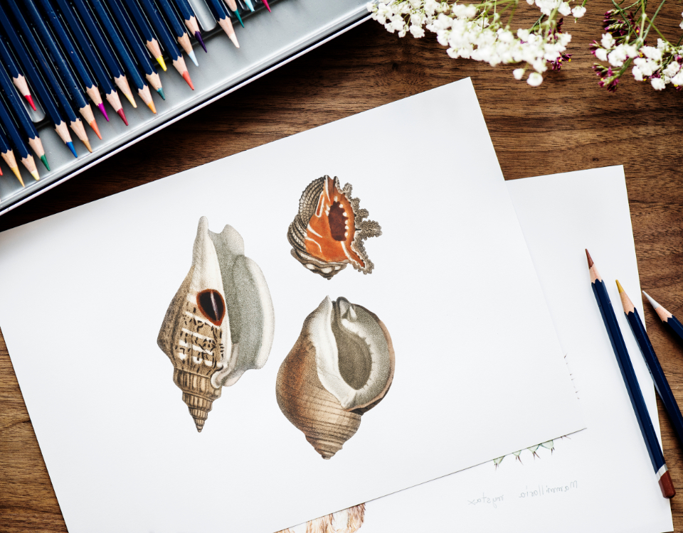 art color design drawing flat lay flatlay freelance freelancer hobby illustration illustrationist paper pen pencil person set stationery tags work working workplace workspace writer marine life