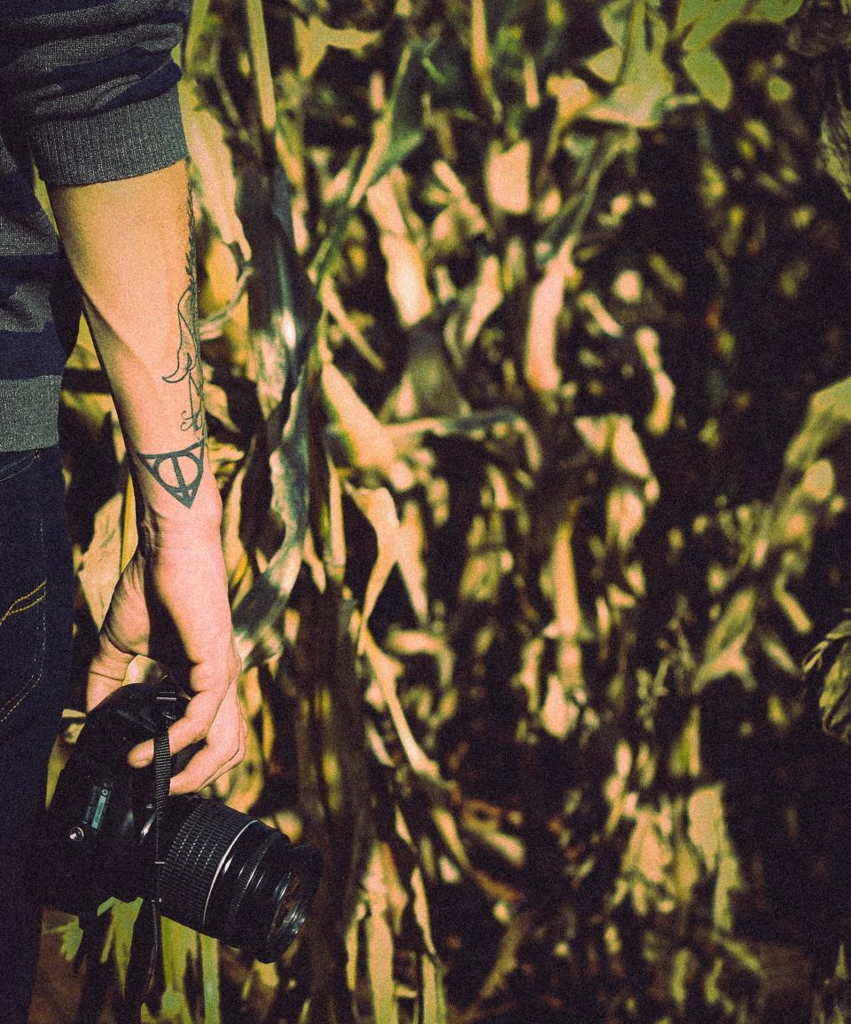 people man guy tattoo art hand arm camera lens photography crops plants field sunlight sunny