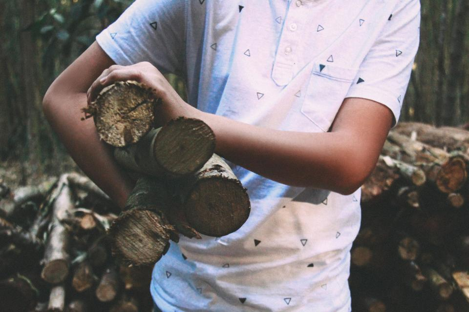 wood logs lumber guy man people forest trees nature outdoors
