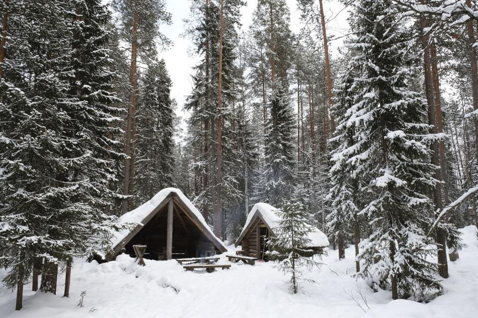 nature landscape snow winter cold weather white woods forest trees travel adventure house home