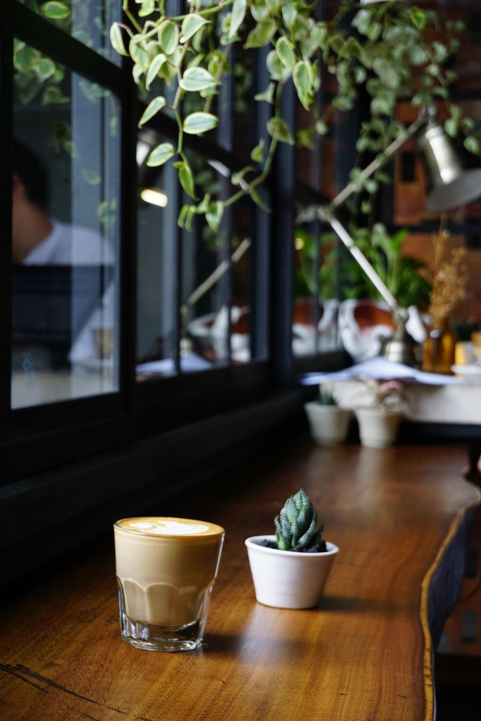 plants nature bonsai glass wooden table coffee latte windows shop restaurant bokeh blur reflection costumer cactus