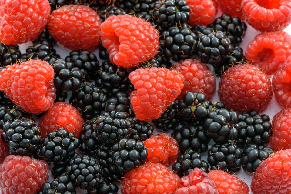 blackberry raspberry berry fruits vitamins food healthy