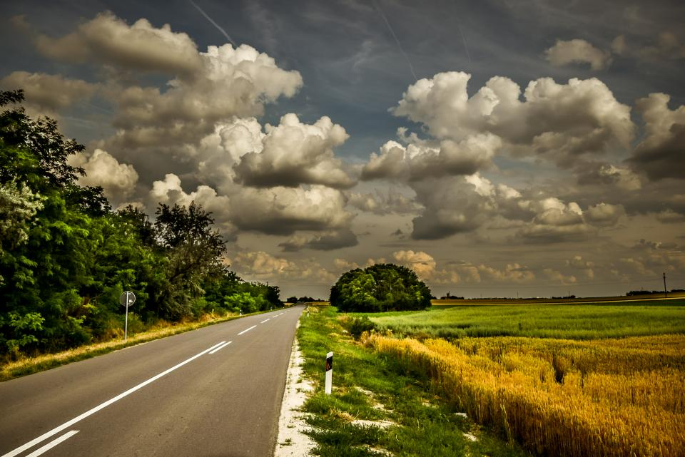 road green grass agriculture field farm tree blue sky clouds travel outdoor