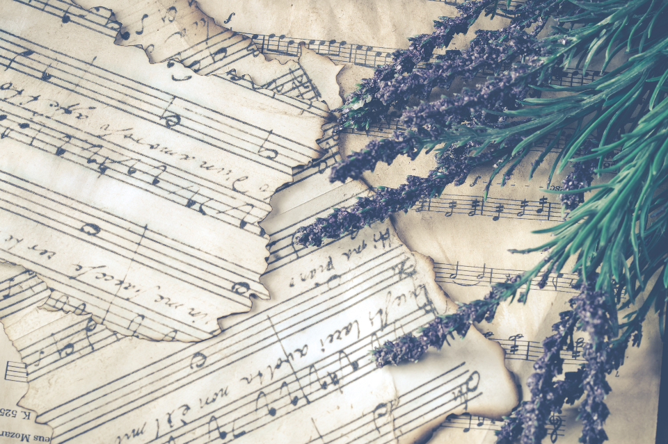 sheet music vintage lavender plant herb nature music torn ripped paper