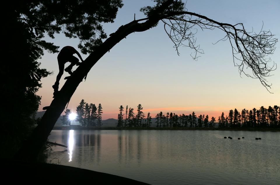 people man climbing tree plant lake water nature dark sunset sky cloud landscape silhouette reflection