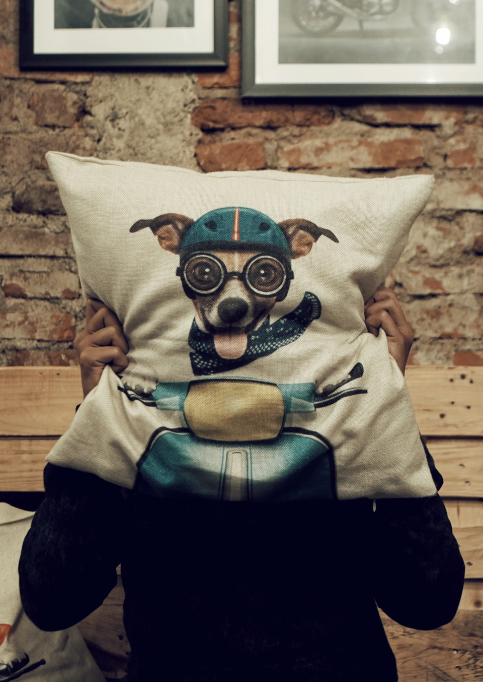 dog cushion man happy goggles brick wall rustic pillow home house smile motorbike bike