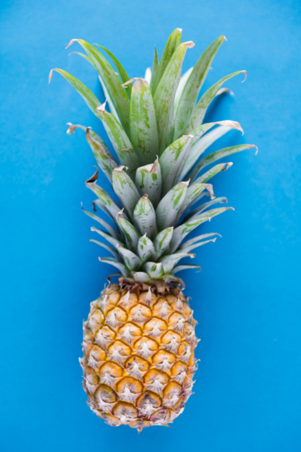 blue background delicious dessert diet energy flat lay flatlay food fresh freshness fruit healthy ingredient isolated juicy natural nature nutrition nutritious organic pattern pineapple raw refreshment ripe season season