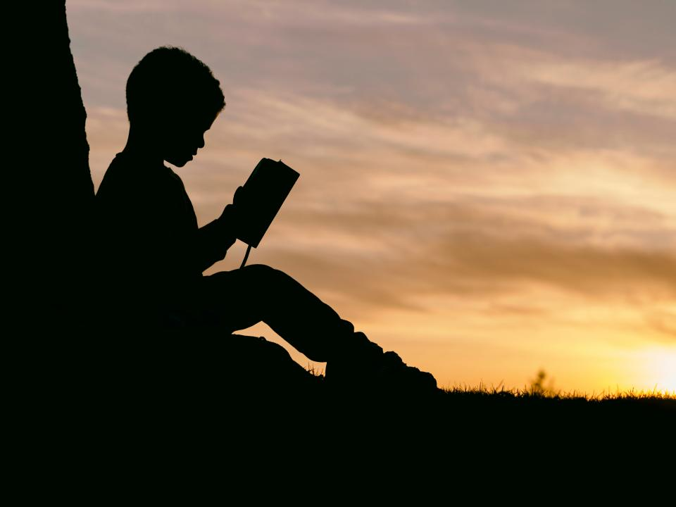 people man kid boy child read book sunset silhouette shadow clouds sky tree grass