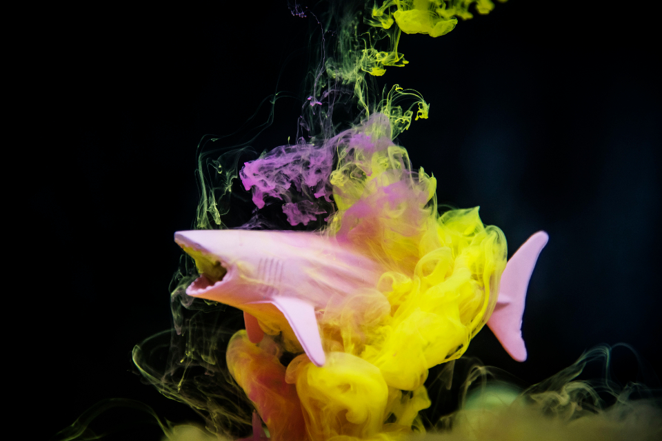 abstract shark art acrylic background black blend bright colorful cloud water liquid toy playful contrast creative danger design dissolve drip drop dye dynamic explosion figure fish flowing ink