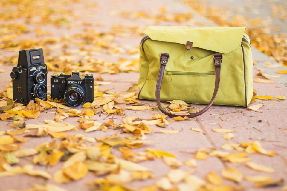 leaf fall autumn street bag camera outdoor travel