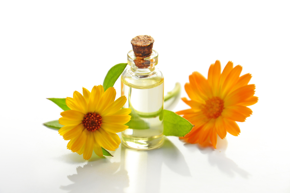 essential oil cosmetic oil spa calendula orange yellow petals glass bottle natural product aromatherapy medicine science beauty treatment therapy alternative