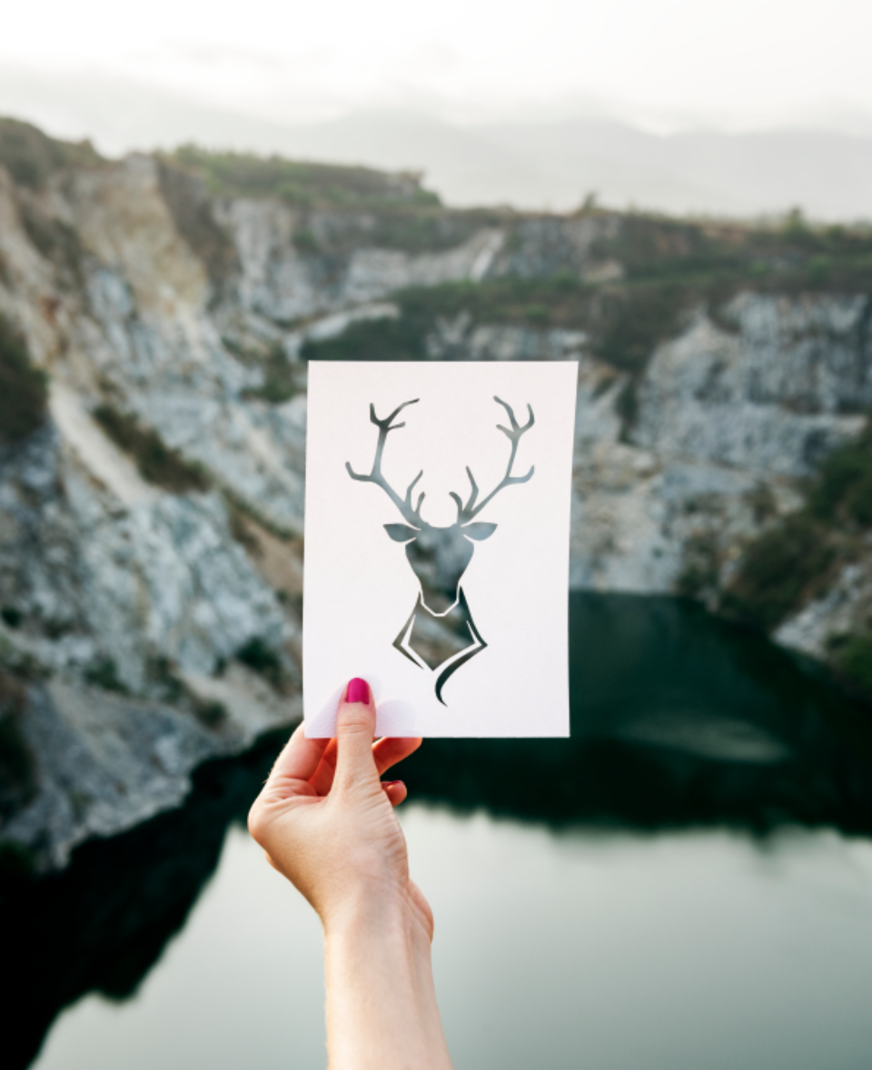calm mountain freedom location wildlife travel exploration life serenity wellness trip place animal deer expedition journey traveler leisure lake tourism chill relaxation destination resting frame vacation sketch stencil a