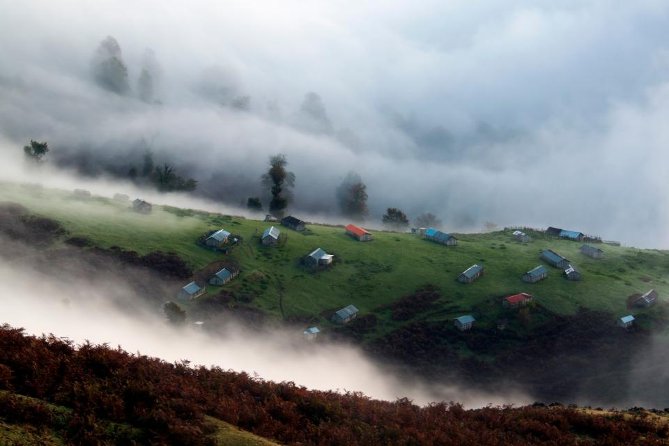highland landscape nature green grass houses rural fogs cold trees plant