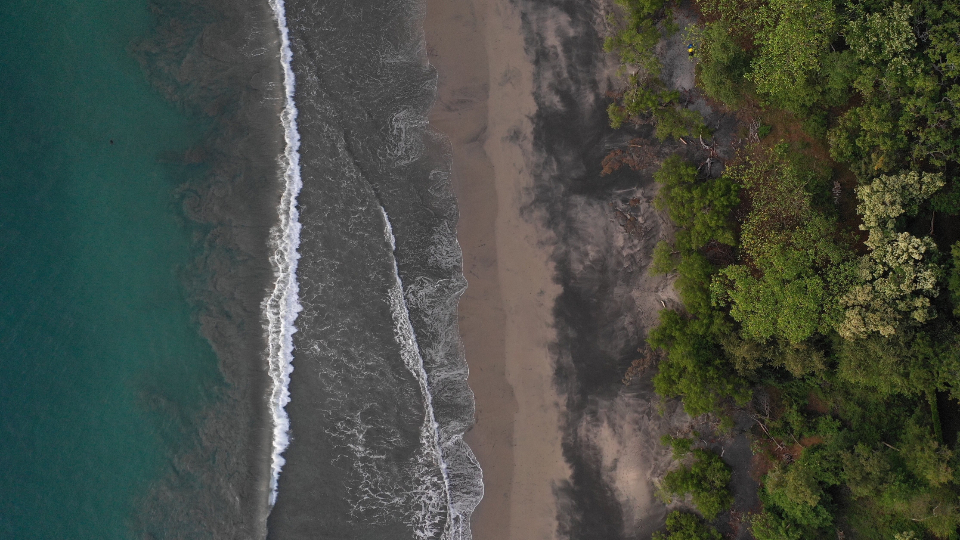 aerial water trees waves nature outdoors forest shore coast drone landscape environment