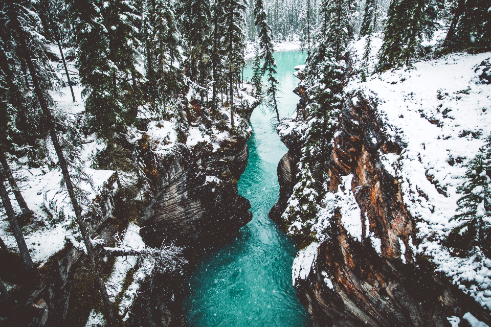 Snow winter snowing canyon Athabasca waterfalls waterfall glacier water stream lake river forest trees tree