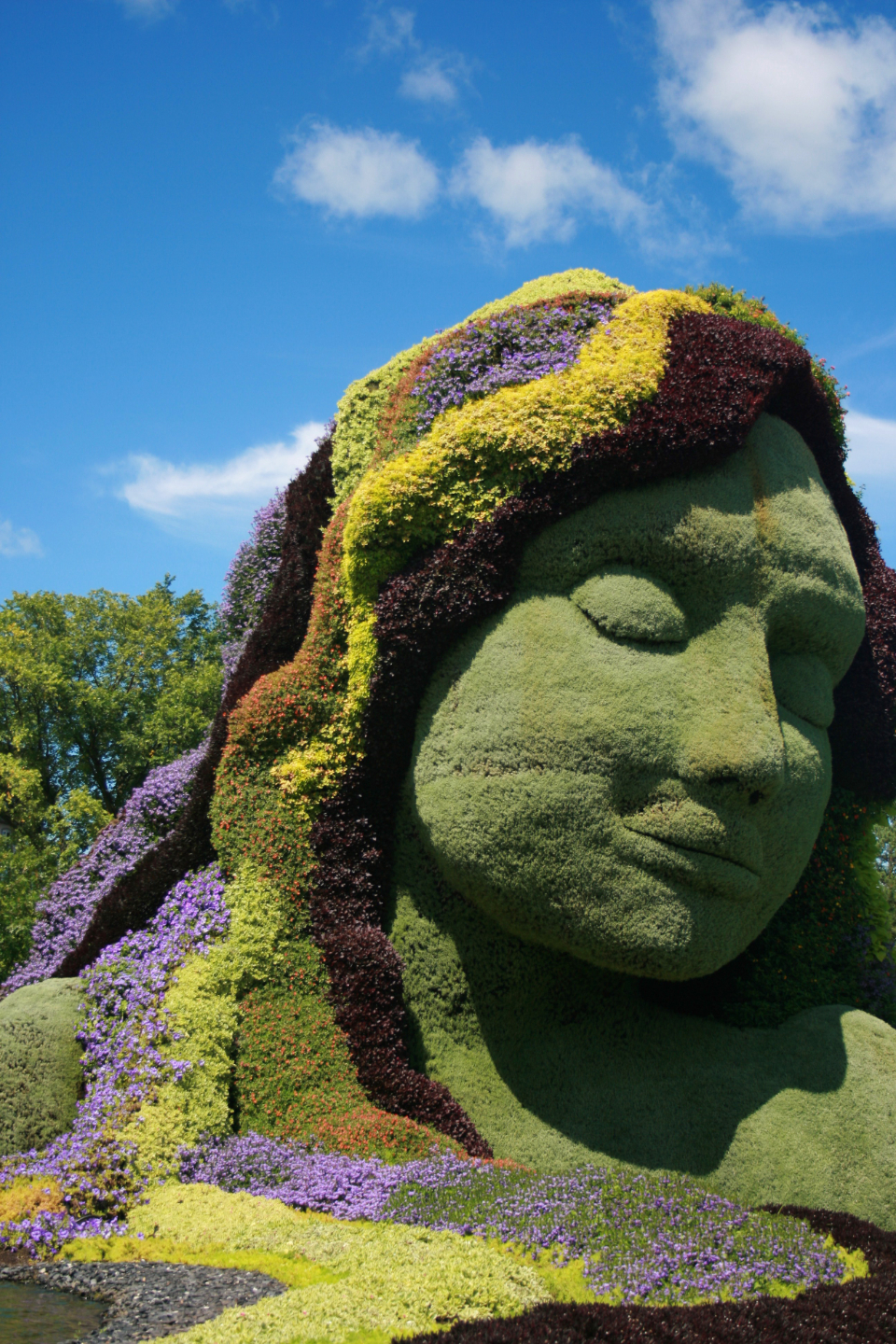 garden hedges plant sculpture art flowers botany green decoration face head eyes nose mouth