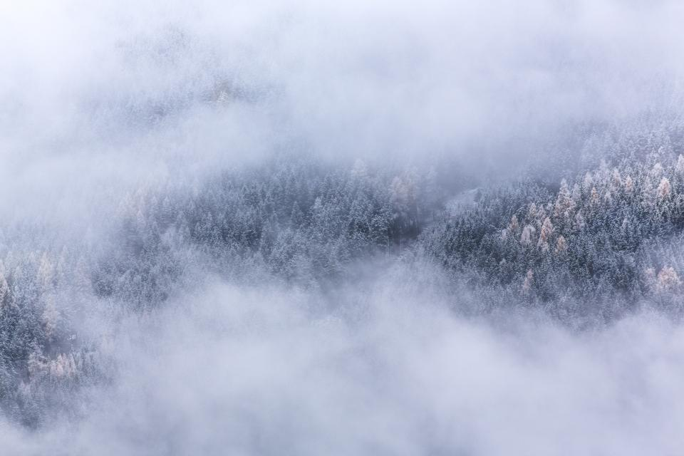 nature landscape forests trees blanket fog clouds