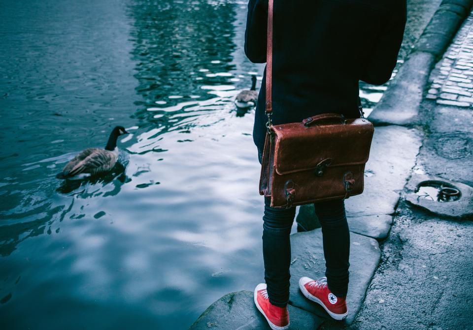 shoes sneakers footwear converse duck swan bird bag river water travel people