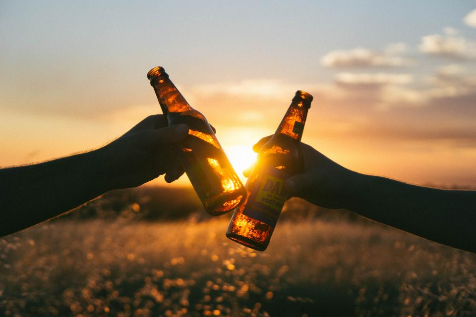 cheers beer bottles hands sunset dusk field nature sky silhouette