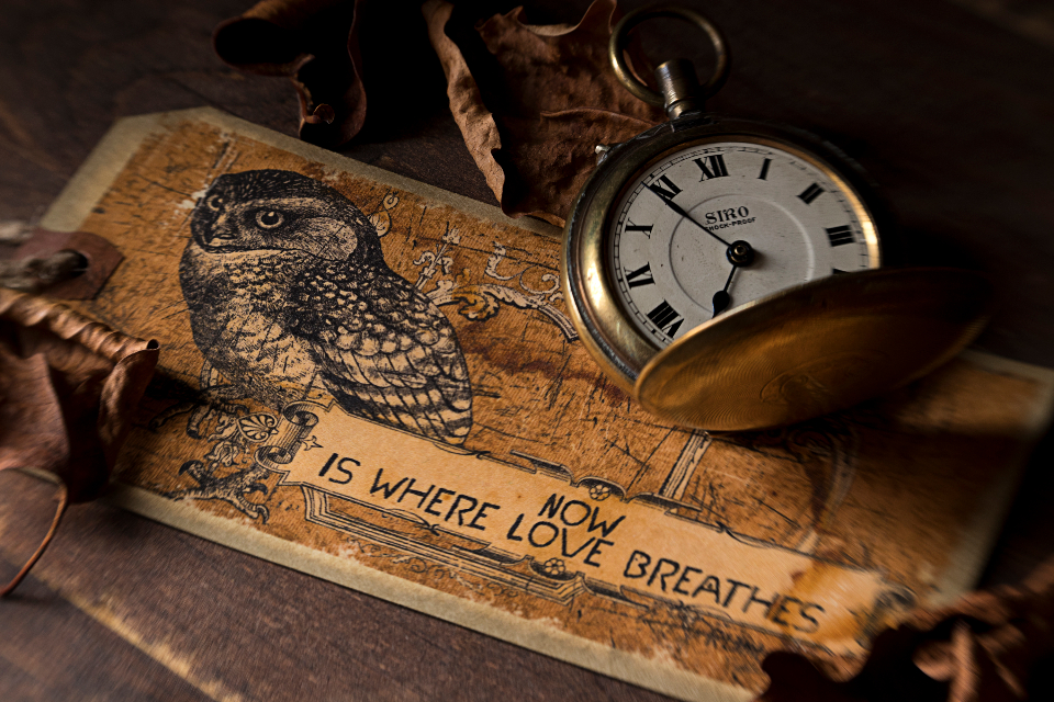 Free stock photo of antique watch