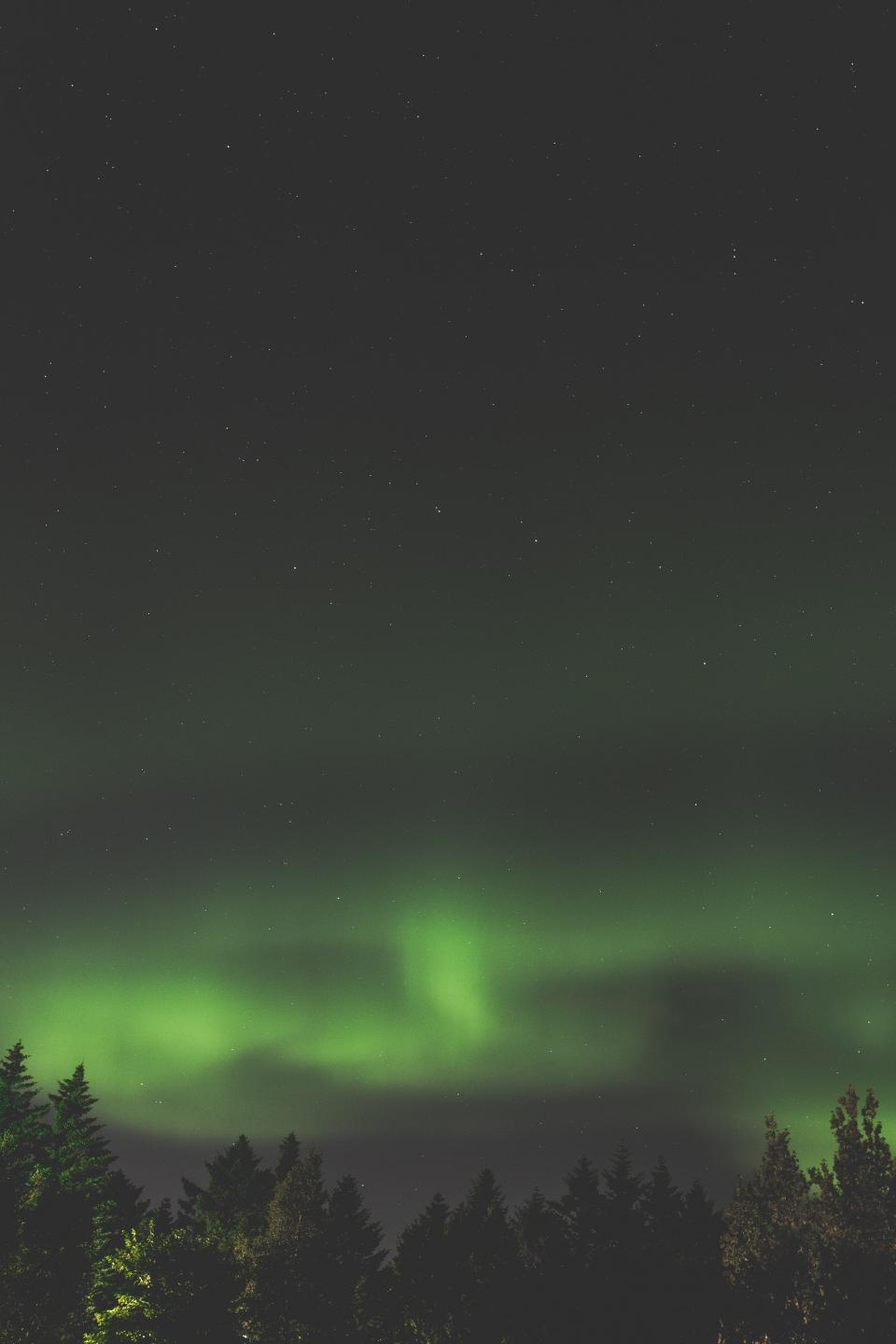 Free stock photo of aurora green