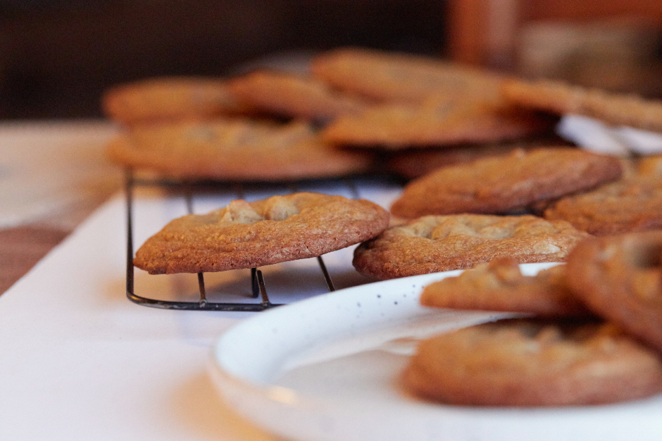 Free stock photo of baked cookies