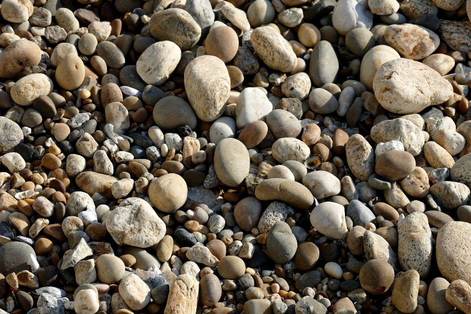 Free stock photo of beach rocks