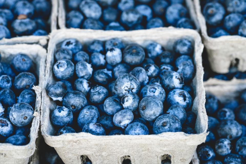 blueberries blueberry fruits