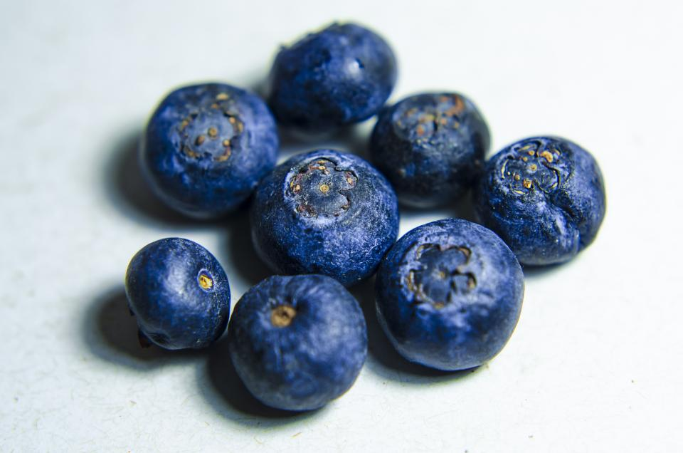 blueberry fruit crop