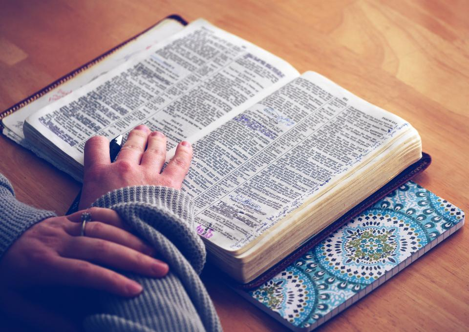 Free stock photo of book bible