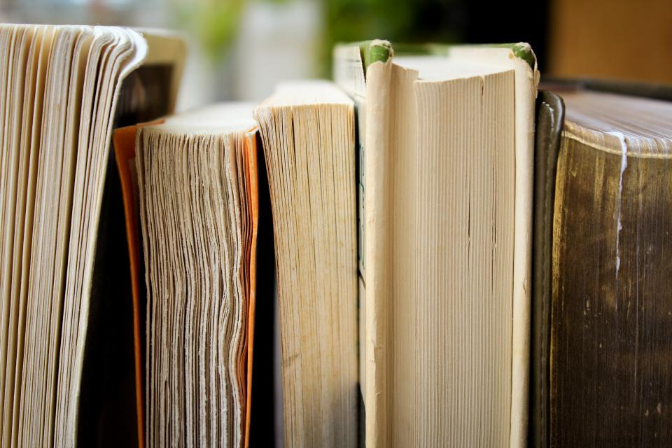 Free stock photo of books reading