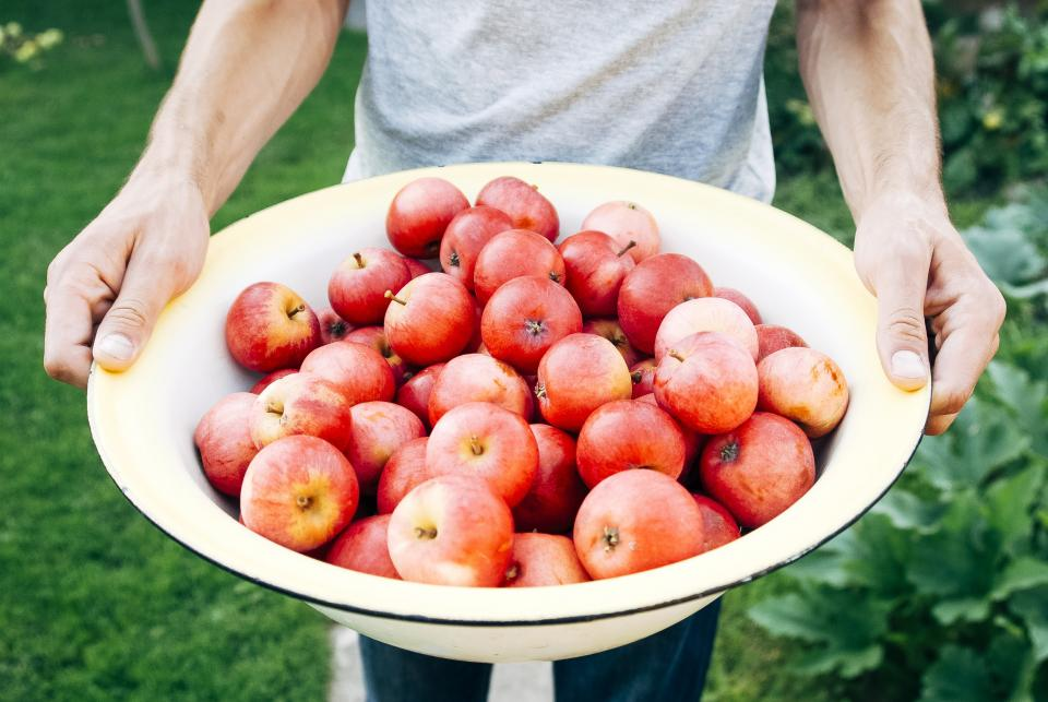 bowl apples fruits