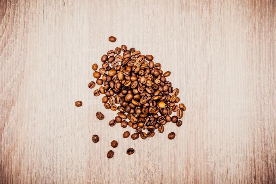 coffee bean seed