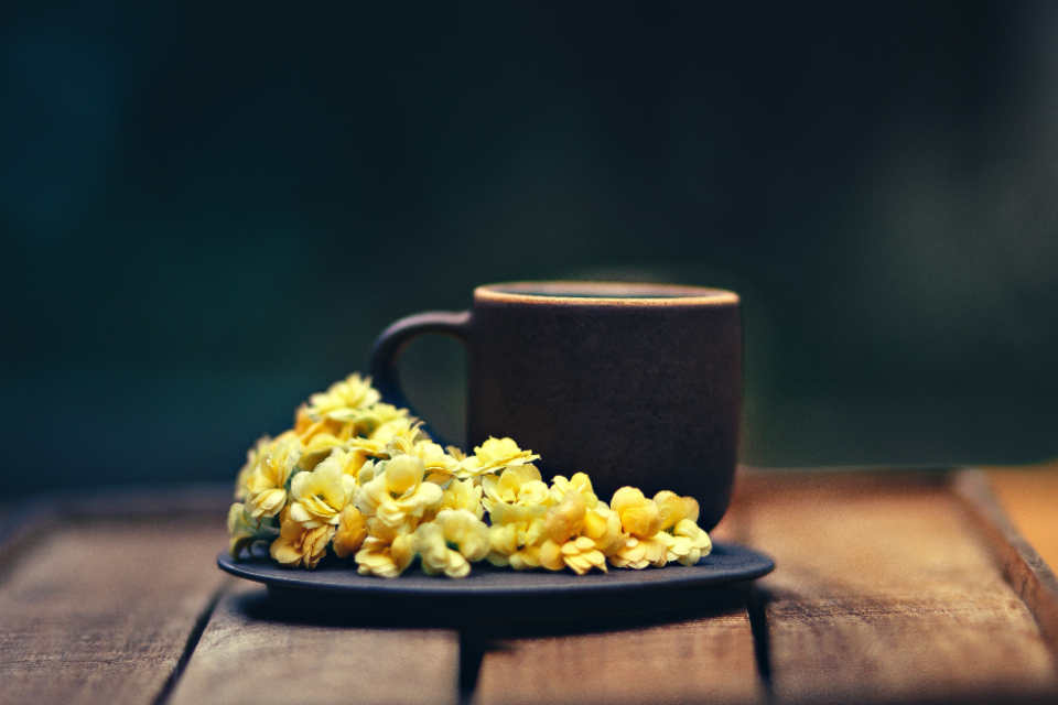 Free stock photo of coffee plate