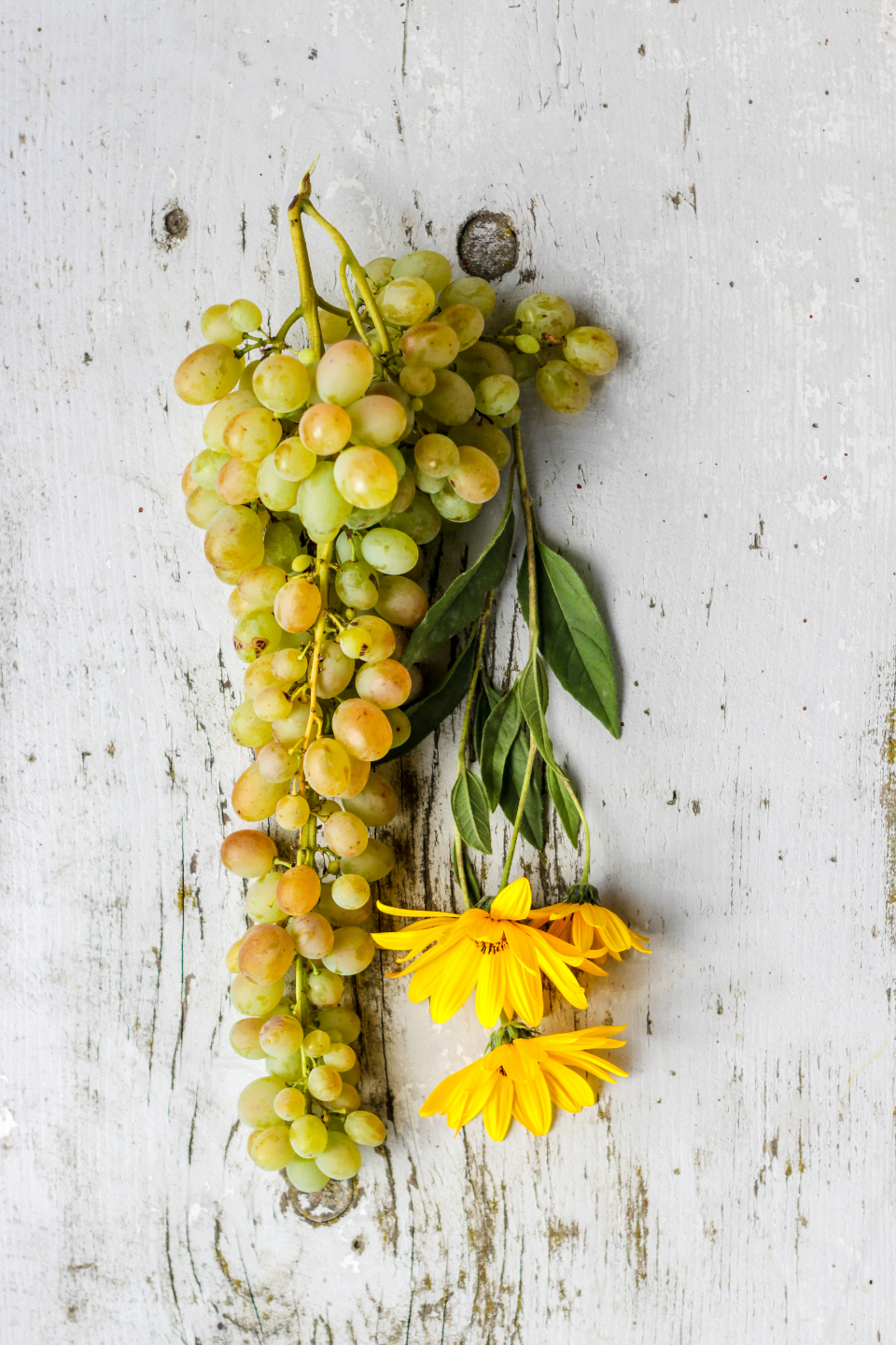 flat lay flowers grapes