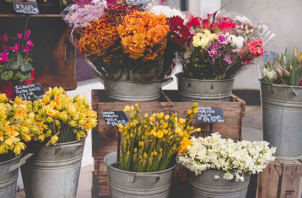 Free stock photo of flower shop