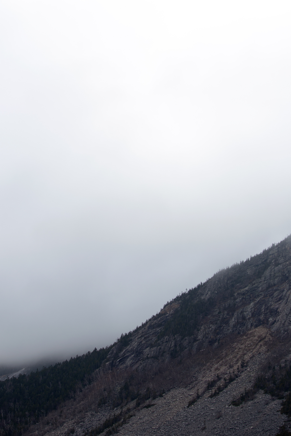 fog mountain weather