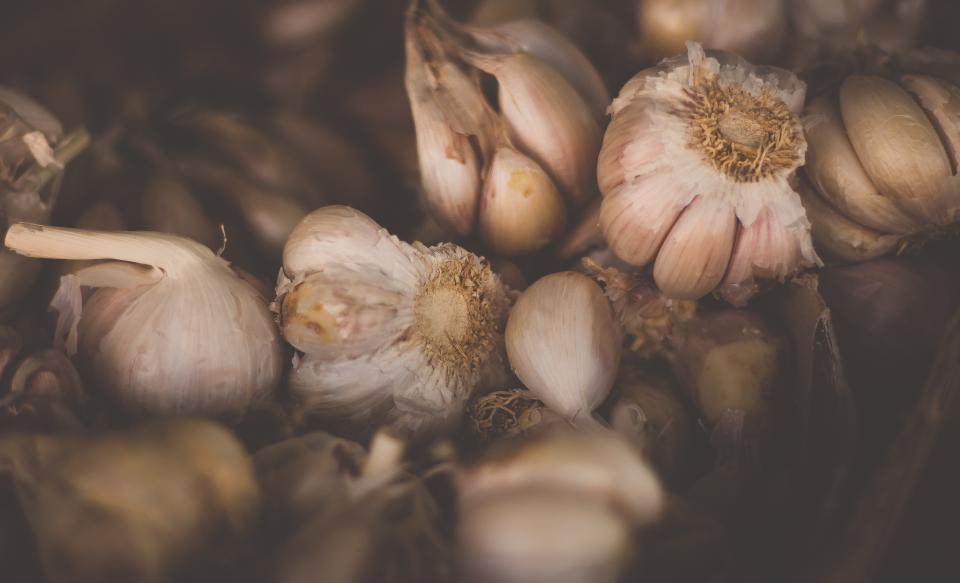 Free stock photo of garlic vegetable
