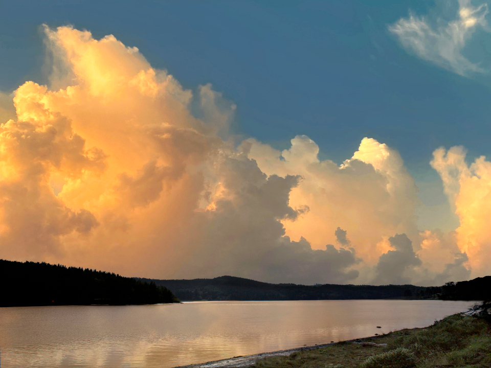 Free stock photo of golden clouds