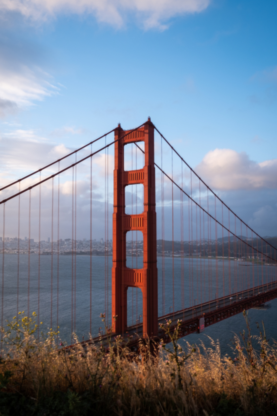 Free stock photo of golden gate